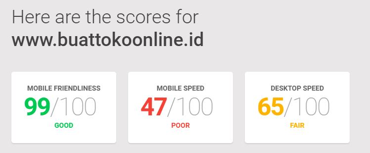 Google's Mobile Friendly and Speed Test Tool-buattokoonline.id