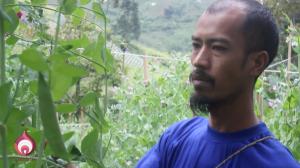 limakilo-id-mengajak-masyarakat-untuk-mengapresiasi-petani-pada-hari-tani