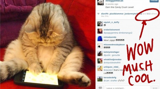 bagaimana-cara-mendapatkan-follower-di-instagram-yang-real