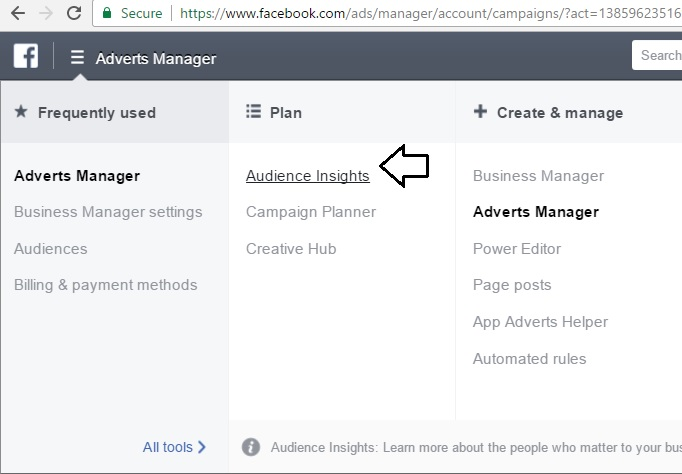 bagaimana memakai Facebook Ads Audience Insight