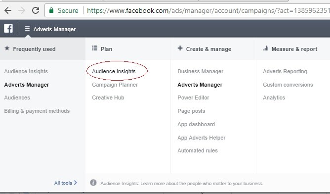 belajar FB ads apa itu audience insight